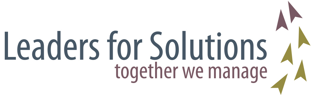 logo Leaders for Solutions